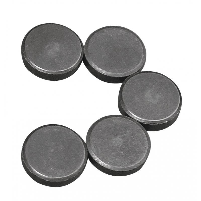5 ronde magneten 20x5 mm