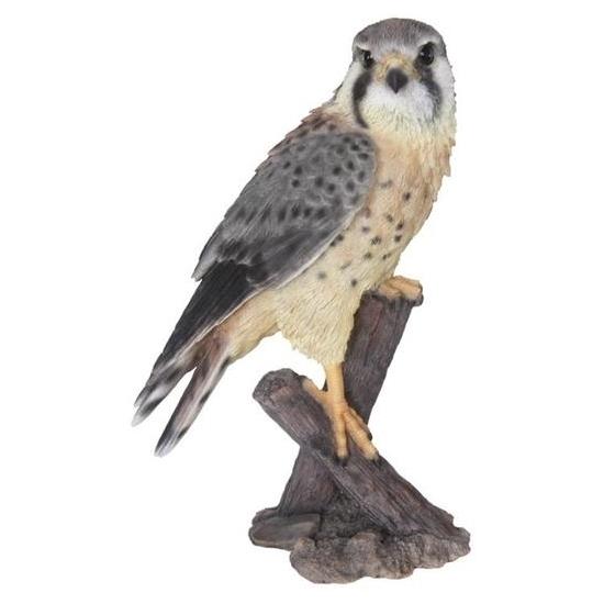 Beeld valk vogel 31 cm