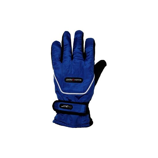 Blauwe ski handschoenen