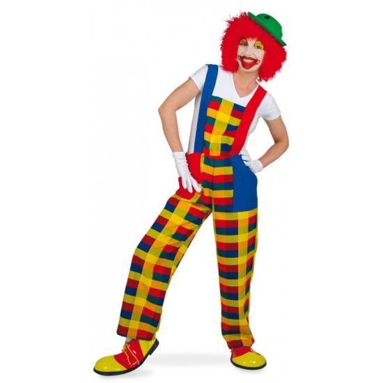 Clown Pebbi kostuum tuinbroek