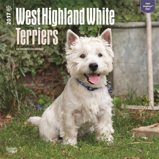 Honden kalender 2017 West Highland Terrier