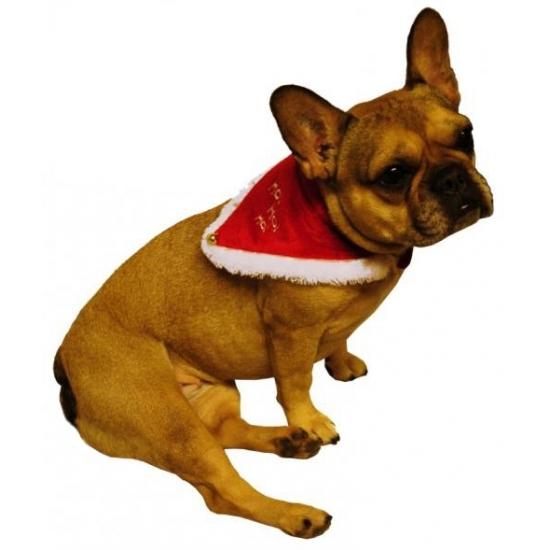 Kerst halsband voor hond of kat