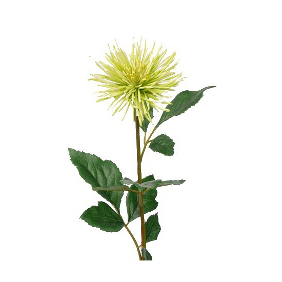 Kunstbloem Chrysant groen 71 cm