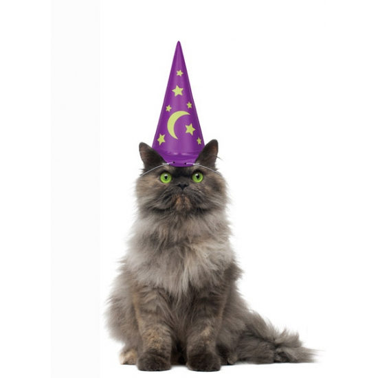 Opblaasbare tovenaarshoed voor katten