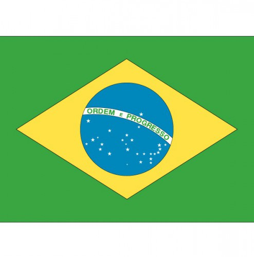 Vlag Brazilie stickers