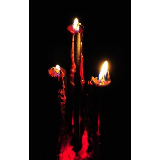 Bloederige kaarsen 26 cm