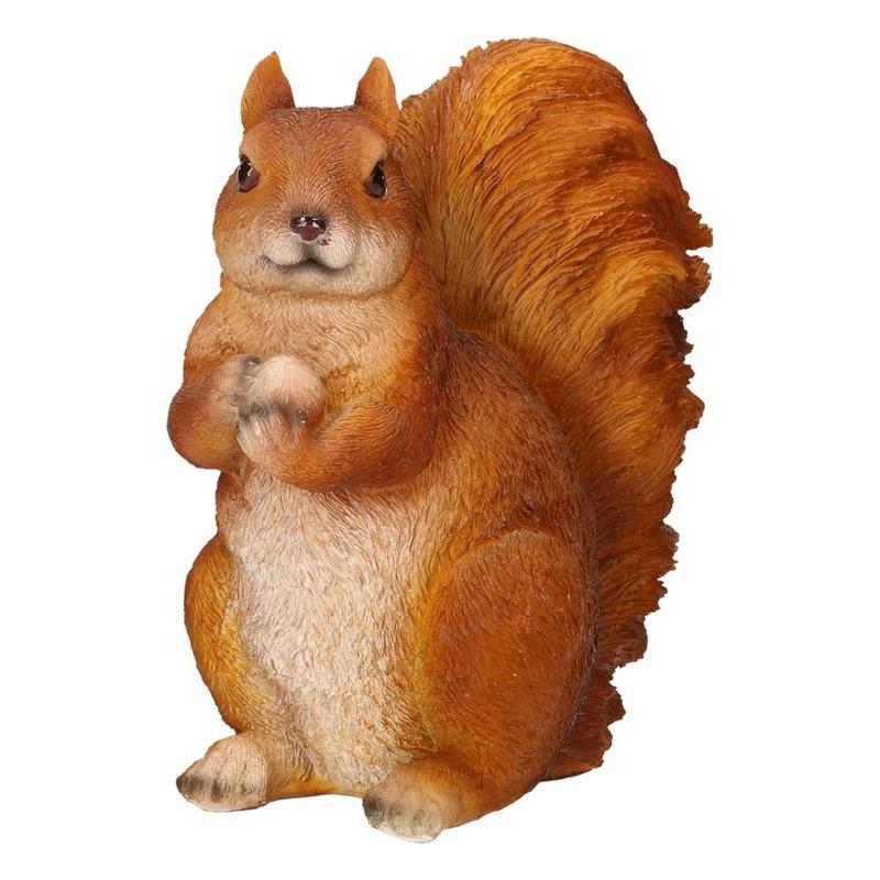 Dieren beeldje van een eekhoorn 17 x 12 x 23 cm
