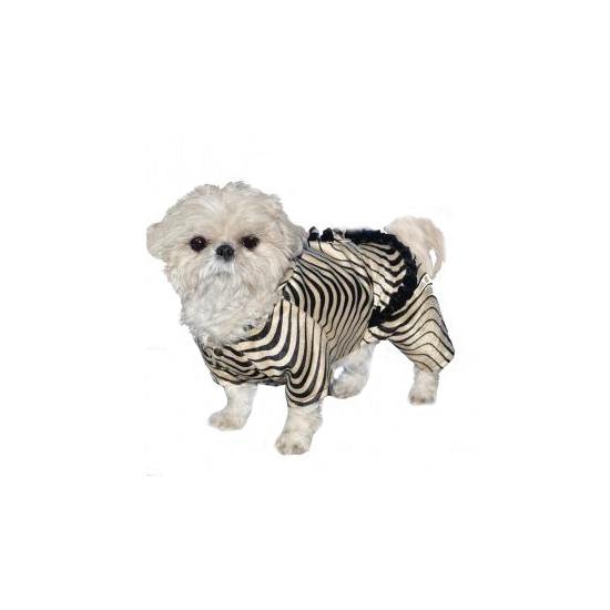 Honden kostuum zebra. zebra kostuum voor honden. het kostuum past honden met een schofthoogte van ongeveer 23 ...