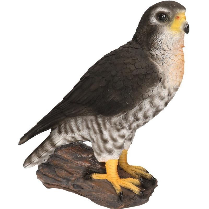 Slechtvalk roofvogel beeldje woondecoratie 26 cm